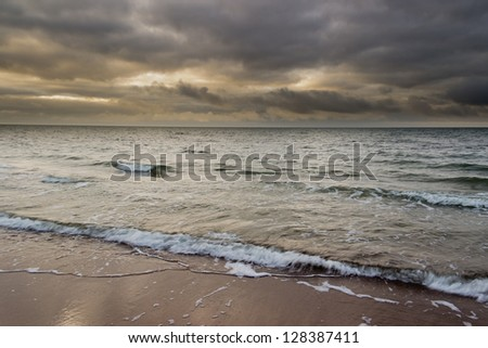 A driftwood on the cold winter sea - stock photo
