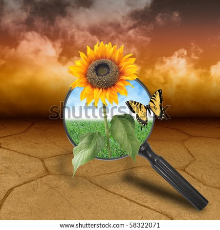 A dry brown desert landscape with clouds in the background. There is a magnifying glass with a sunflower growing out of it. There is a nature background of clouds and grass behind it. - stock photo