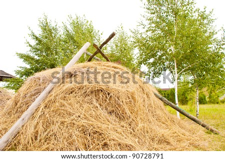 a dry haystack on a meadow
