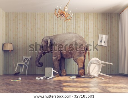 a elephant calm in a room. photo combination concept - stock photo