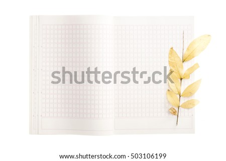A empty(blank) white spread note with yellow leaf(leaves) for fall(autumn) isolated white.