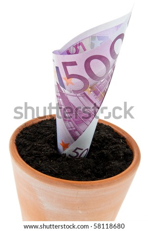 A Euro bank note in flower pot. Symbol rates, growth.