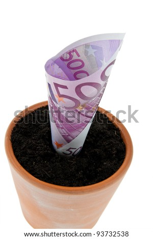 a euro bill in flower pot. symbol rates, growth.