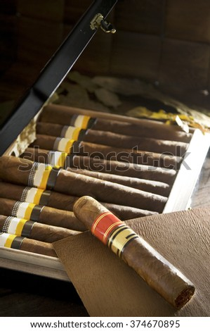 a expensive cigar with others blurry cigars on background on a casket with a beautiful light - stock photo