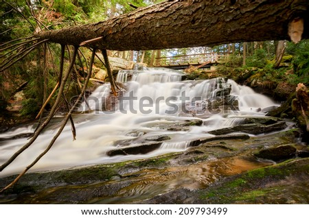 A fallen tree hangs over a waterfall in a forest.  - stock photo