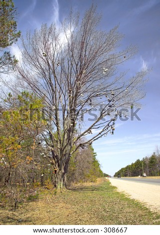 A famous large Shoe Tree stands next to US 131, just north of Kalkaska, Michigan. (14MP camera) - stock photo