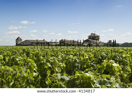 A famous winery in Bordeaux - stock photo