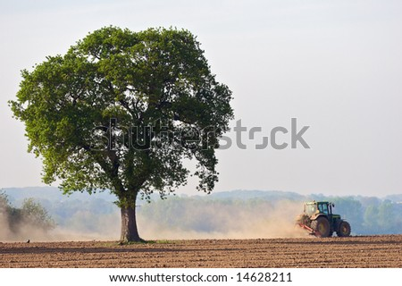 A farmer planting crops in a dry field with a tree - stock photo