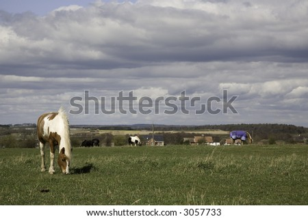 A farmers field with horses in