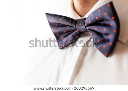 A fashionable groom wears a bowtie. A close-up shot of a man wearing a bowtie - stock photo