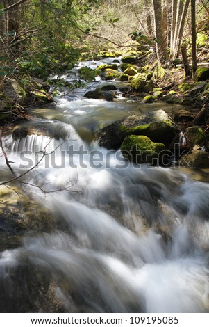 A fast flowing stream in a forest - stock photo