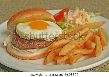A feast for the eyes. An egg hamburger with french fries and coleslaw. - stock photo