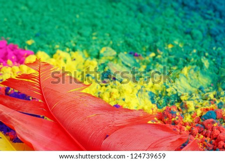 A feather and gulal - stock photo