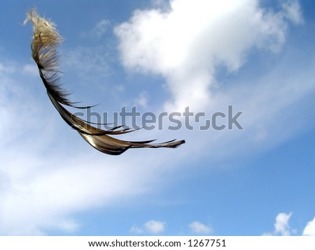 A feather carried by wind. - stock photo