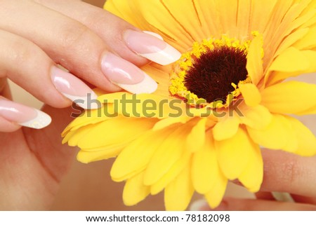 A female hand touching a flower - stock photo