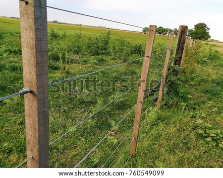 A fence in the field