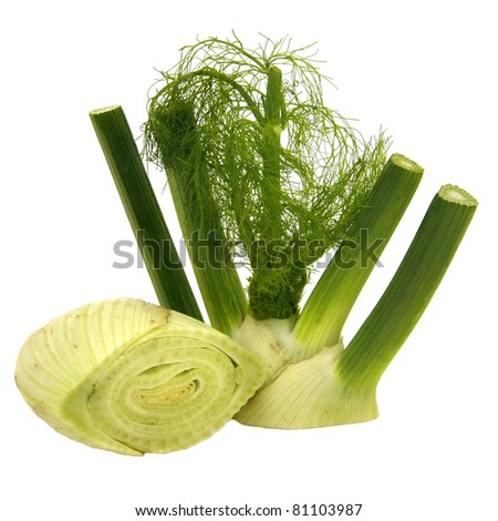 A fennel divided in upper and lower part