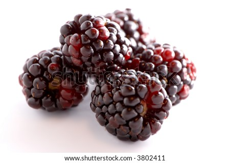 a few blackberries over a white background - stock photo