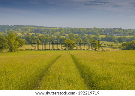 a field in the countryside in a rural environment