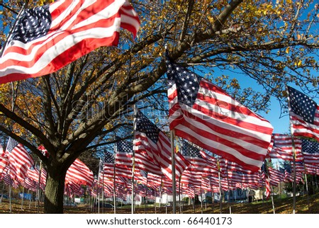 A field of american flags on a bright winter day. - stock photo