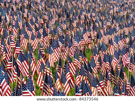 A field of US Flags in tribute to fallen warriors. - stock photo