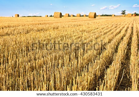 A field with of straw bales after harvest on the blue sky background with clouds - stock photo