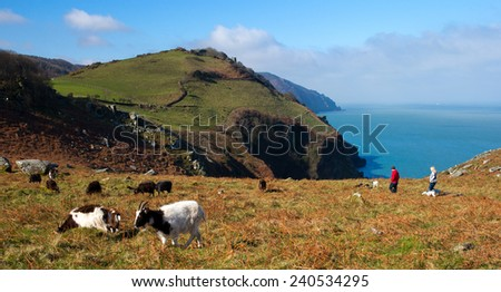 A fine early Spring day, wild goats and walkers, Valley of the Rocks, Lyntom, north Devon, England, UK. - stock photo