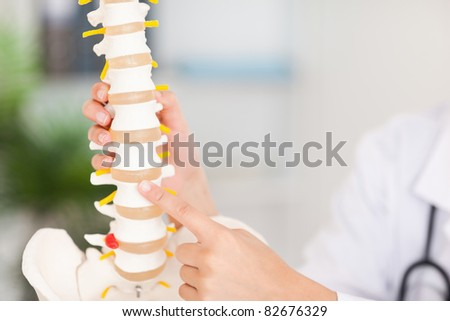 A finger is pointing at a bone in the spine