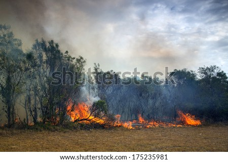 A fire in Port Elizabeth, South Africa - stock photo