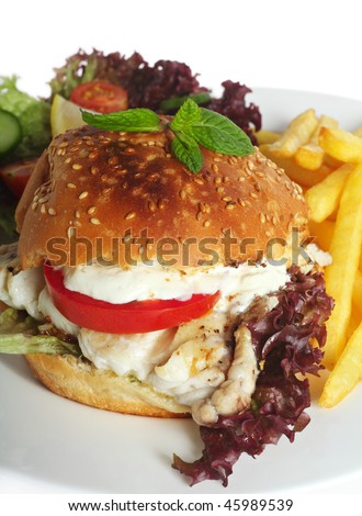 A fish burger - a fillet of fried fish in a bun with lollo rosso lettuce, tomato and a creamy garlic topping, served with a salad and fries. - stock photo