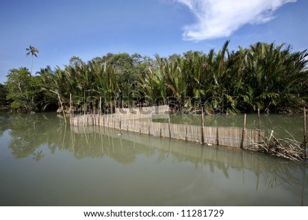 A fish trap sits in a swamp land. - stock photo