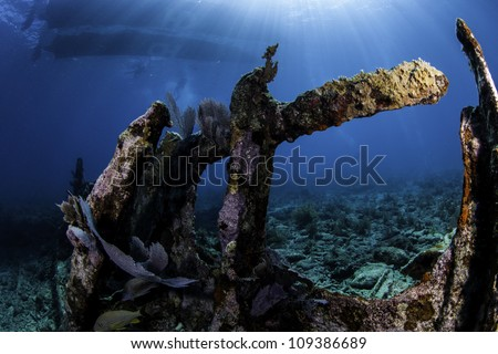 A fisheye shot of the remains of the shipwreck City of Washington in Key Largo, Florida. Covered in coral growth and blue water background with sun rays shining through the water. - stock photo