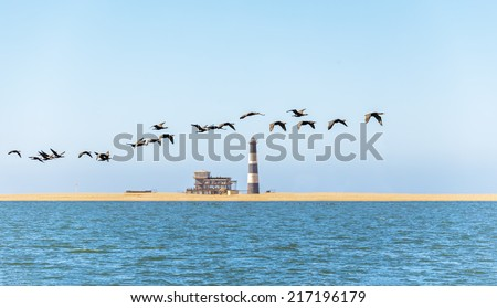 A flock of flamingos flying over the coast of the ocean in Namibia (Pelican Point lighthouse on background) - stock photo