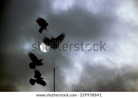 A flock of four black crows squabbling over lightning rod perch against a dark cloudy night sky background - stock photo