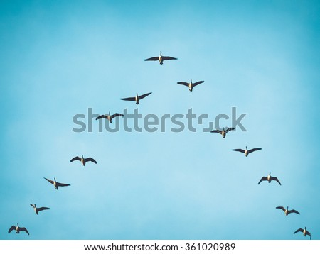 Canada Goose jackets sale cheap - Effectiveness Stock Photos, Images, & Pictures | Shutterstock