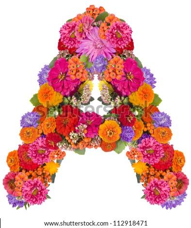 A, flower alphabet isolated on white - stock photo