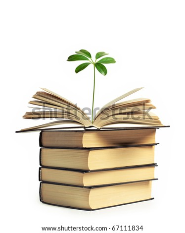 A flower growing out of an open book on white background - stock photo