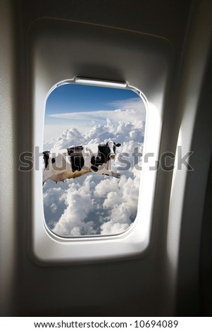 A flying cow viewed out a plane window - stock photo