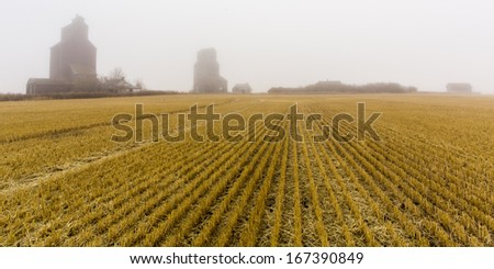 A foggy and misty morning where a couple of grain elevators lurk in the air. - stock photo