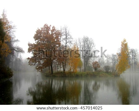 A foggy pond in an old park, Moscow region