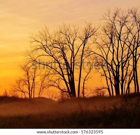 A foggy sunrise over the dune grass of the Lake Huron coast. Port Crescent State Park. Port Austin, Michigan.  - stock photo