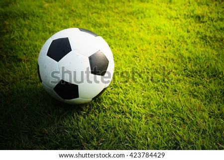 A football (soccer) on green grass field background