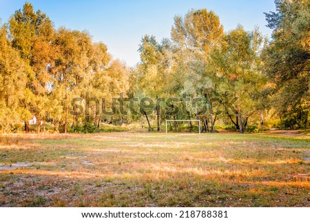 A football (soccer) playground surrounded by trees in the middle of the forest - stock photo