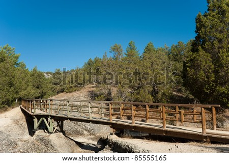 A footbridge leading into a lush  forest - stock photo