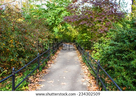 A footpath in the Central Park , New York, United States  - stock photo