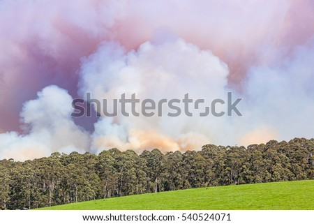 A forest fire near the town of Pemberton in Western Australia.