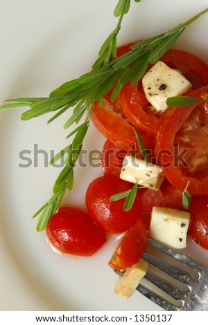 A fork rests on a plate of fresh tomato salad. - stock photo
