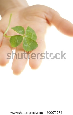 A four leaf clover in an open hand. - stock photo