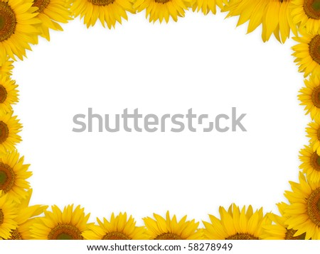 A frame (border) made of sunflower heads - stock photo