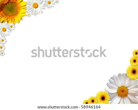 A frame made of white and orange flowers - stock photo